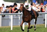 Thomas Hobson cut for Melbourne Cup success by 15 bookies