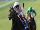 Punters despair: Former favourite withdrawn from 2000 Guineas