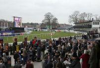 Sundays Horse Racing Market Movers