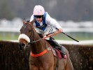 The five most backed horses on the nine race Ascot card