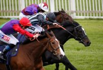 Sunday's Horse Racing Market Movers