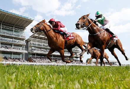 Ebor Festival 2019 betting: Ante-post market movers