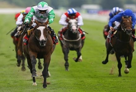 Dante Festival Betting: Who the punters are backing