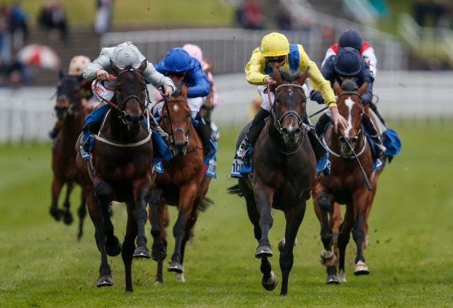 Young Rascal's odds slashed for the Derby following impressive Chester victory