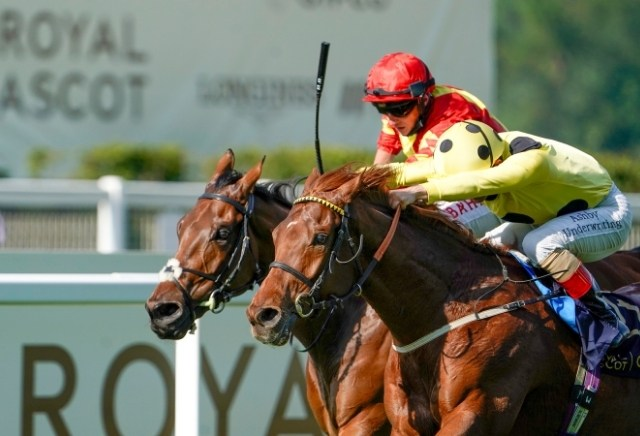 More opportunities for value at Royal Ascot with Tote World Pool