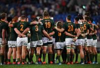 Rugby World Cup 2019: Latest odds and betting activity