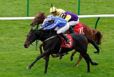 Cesarewitch Handicap Entries, Runners Guide & Betting Latest
