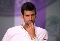 Djokovic dominates Wimbledon betting