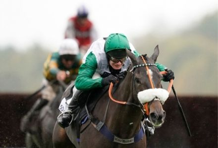 Charlie Hall Chase: Runners Guide & Betting Latest