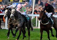Focus On Fantastic Fairyhouse