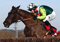Nicholls Unleashes Novice Chasing Talent