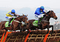 Rare Glimpse of Champion Hurdle Prospects