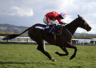 Twiston-Davies Setting Great Example