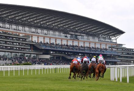 Which horse should you back at Ascot based on your football team?