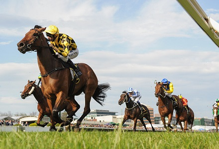 New Year's Day racing tips