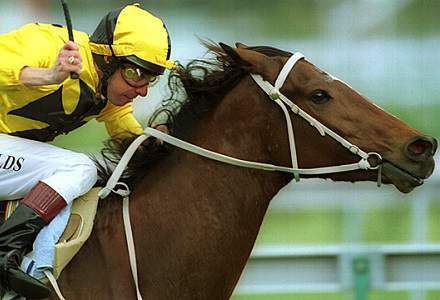 Gilmore - Cranbourne Betting Tips