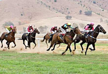 Coonamble (Monday) Betting Tips & Preview