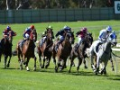 Bendigo (Tuesday) Betting Preview & Tips