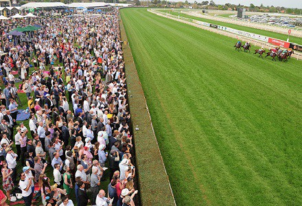 Caulfield Betting Tips