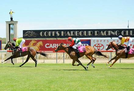 Betting Tips: COFFS HARBOUR