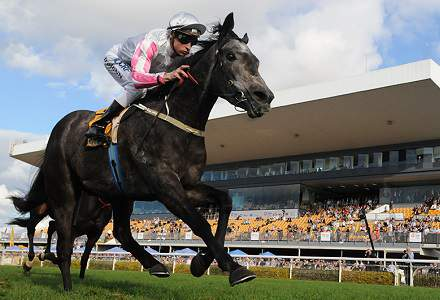 Gilmore - Geelong and Cessnock Betting Tips