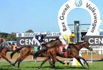 Geelong (Tuesday) Betting Tips & Preview
