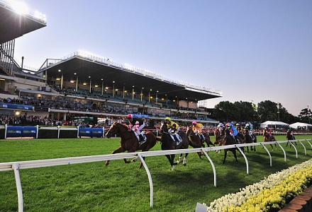 Moonee Valley - Moir Stakes Day Tips