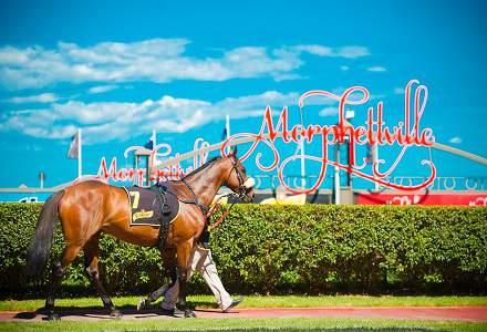 Betting Tips: MORPHETVILLE