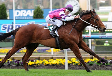 Gilmore - Swan Hill and Hawkesbury Tips