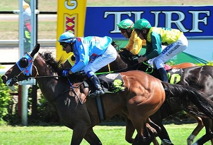 Geelong and Townsville Sunday racing tips