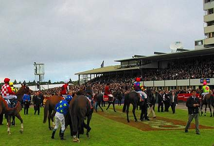 Warrnambool Betting Preview | Horse Racing Tips