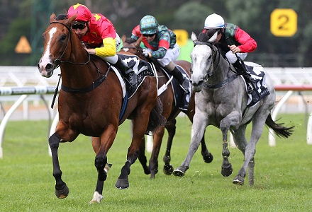 Gilmore - Sandown and Warwick Farm Tips