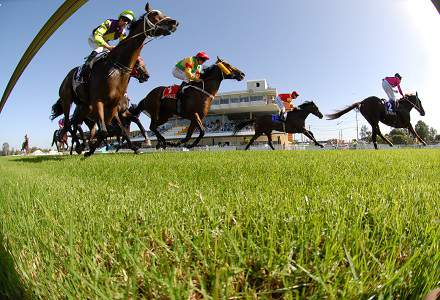 Wyong Betting Preview