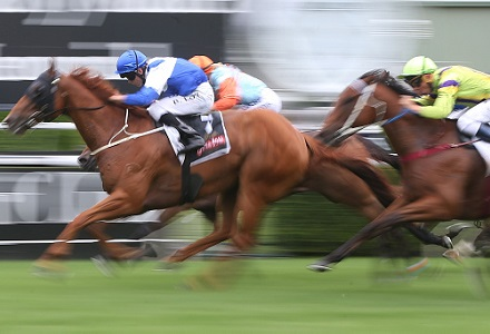 Gilmore - Echuca Betting Tips