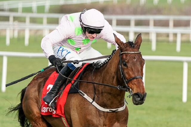 The best Punchestown free bets & bookie offers