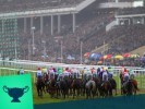 What will the official going be at Cheltenham Festival 2020? Ground odds for the Greatest Show on Turf Revealed