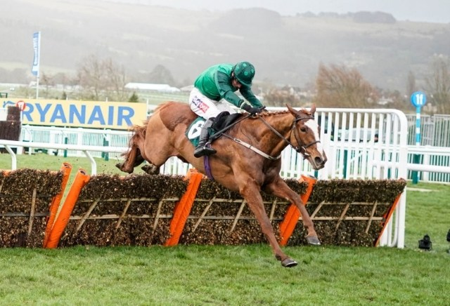 Cheltenham Mares' Hurdle 2021: Tips, Runners & Prediction