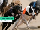English Greyhound Derby 2020 Betting Tips & Preview