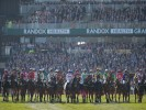 Will the Grand National be postponed due to Coronavirus? Latest betting markets say YES