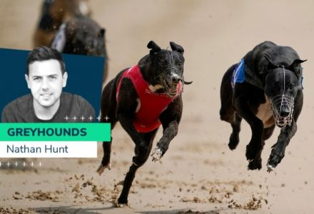 Nathan Hunt: Live chances at Romford and the British Bred Sprint Competition