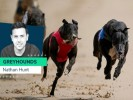 Nathan Hunt's greyhounds to watch this weekend
