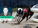 Nathan Hunt: Greyhounds to watch this weekend