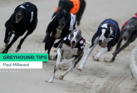 Thursday Greyhound Racing Tips