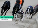 Thursday Greyhound Racing Tips