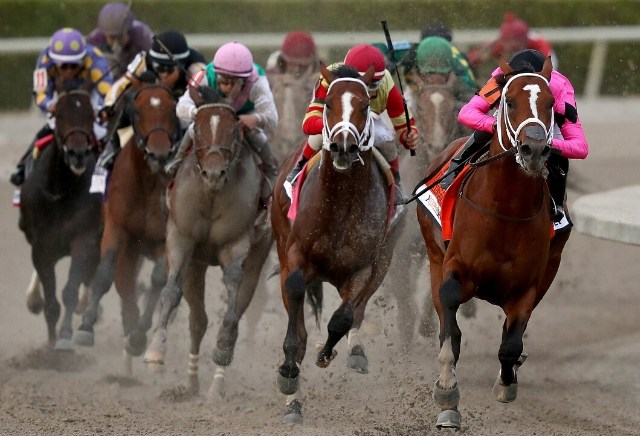 Gulfstream park horse racing oddschecker betting earning bitcoins for free