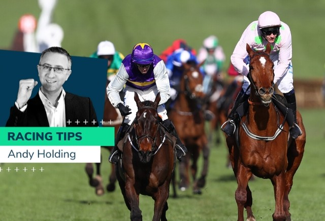 Andy Holding Tips: Novice Targets for 2021