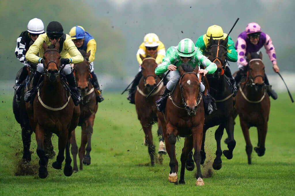 Free Tips Horse Racing
