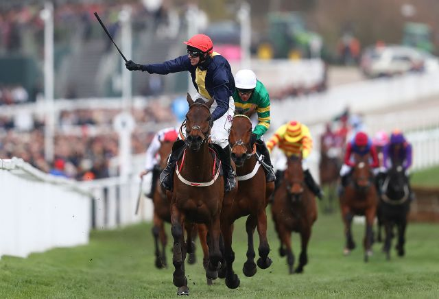 Andy Holding's National Hunt Horses to Follow 2019-20
