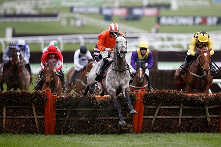 Who are the UK's biggest cities backing for the Supreme Novices Hurdle?