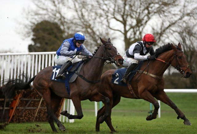 Money Horse: Thursday's Most Backed Horse